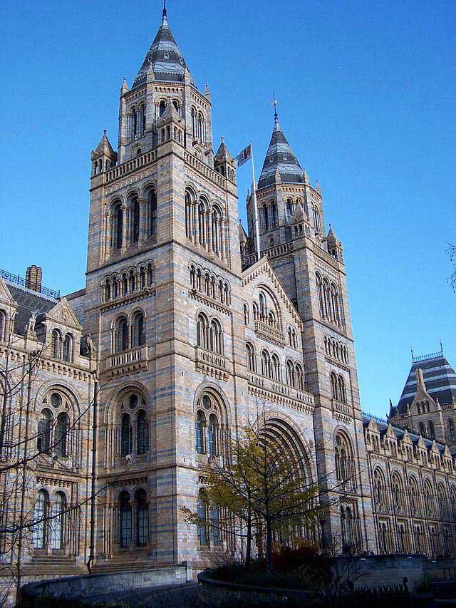 המוזיאון להיסטוריה של הטבע בלונדון