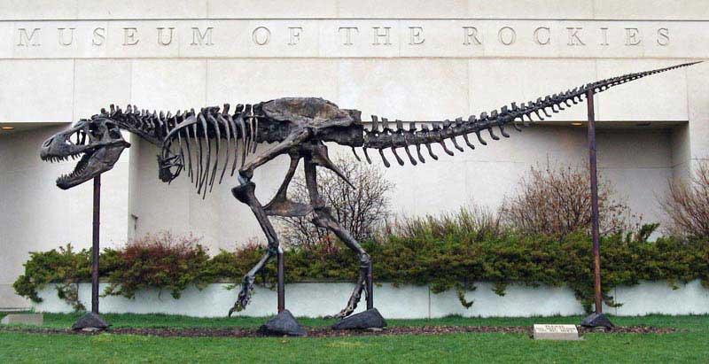 מייק הגדול בכניסה למוזיאון הרי הרוקי