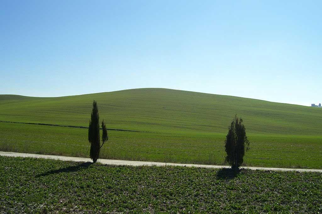שדות קצורים בקרֶטֶה סֶנֶסי