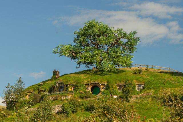 עץ האלון מעל מעון בַּג, ביתו של בילבו בגינס