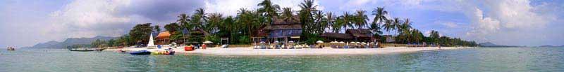 חוף צ