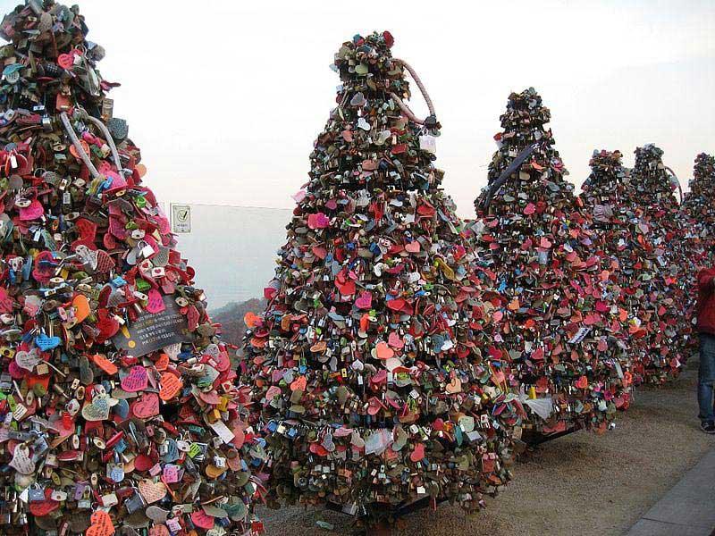 עצים של מנעולי אהבה במגדל סיאול שבקוריאה הדרומית