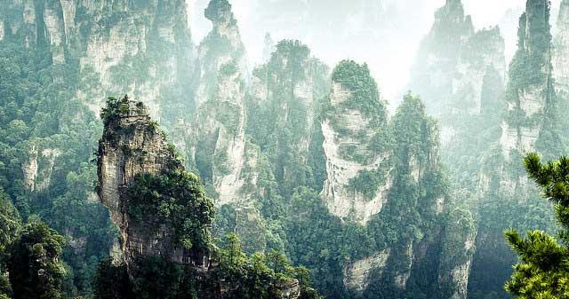 יער עמודי הסלע בפארק הלאומי דז