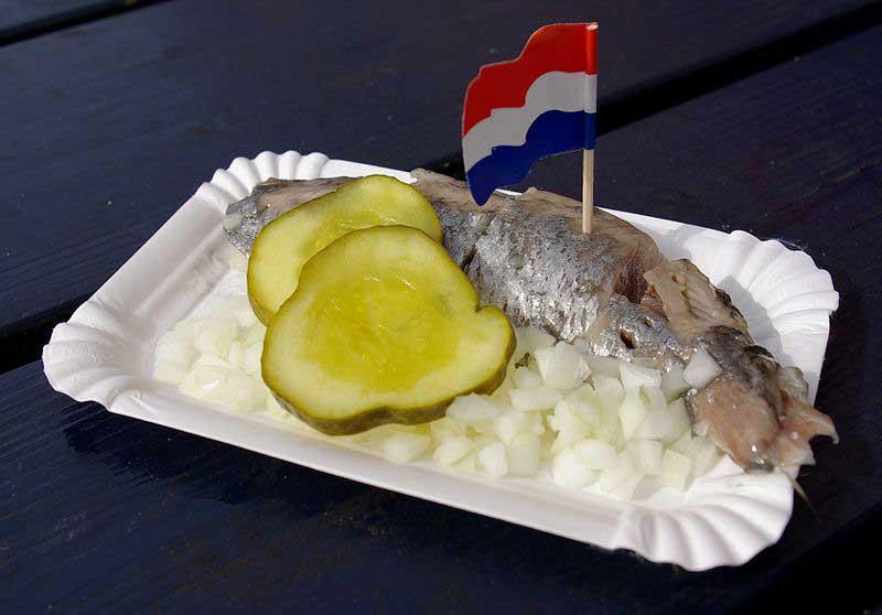 מנת הדגל - הרינג הולנדי