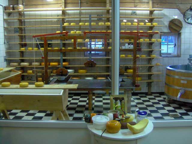 תצוגה על יצור גבינה בכפר זאנסה סכאנס