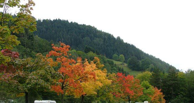 נוף סתווי באזור גוּטאך (ימים 6 ו-7 בטיול 3)