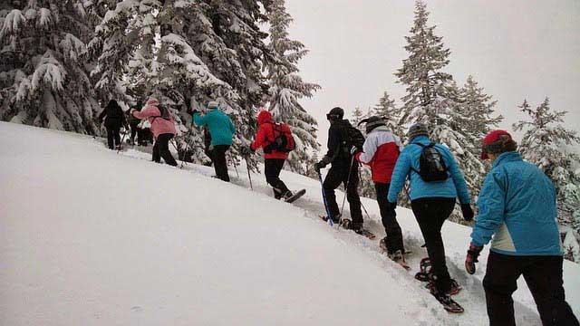 הליכה בנעלי שלג